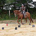 équitation d'extérieur - parcours en terrain varié (176)