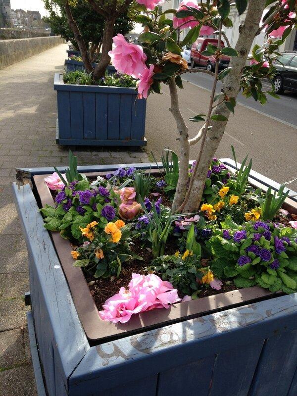printemps_en_bac