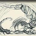 Scorpion - les qualités du temps