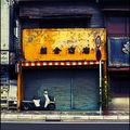 251-Echoppe-Kamakura-4