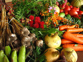 330px-Ecologically_grown_vegetables[1]