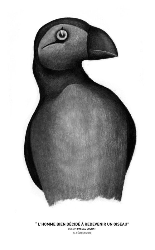 __l_homme_bien_de_cide__a__redevenir_un_oiseau__