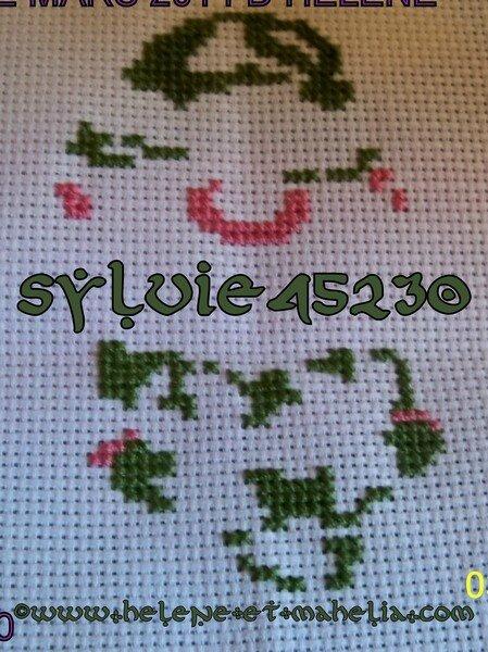 sylvie45230_salmars14_1