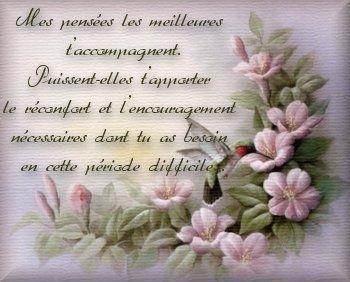 condoléances fleurs