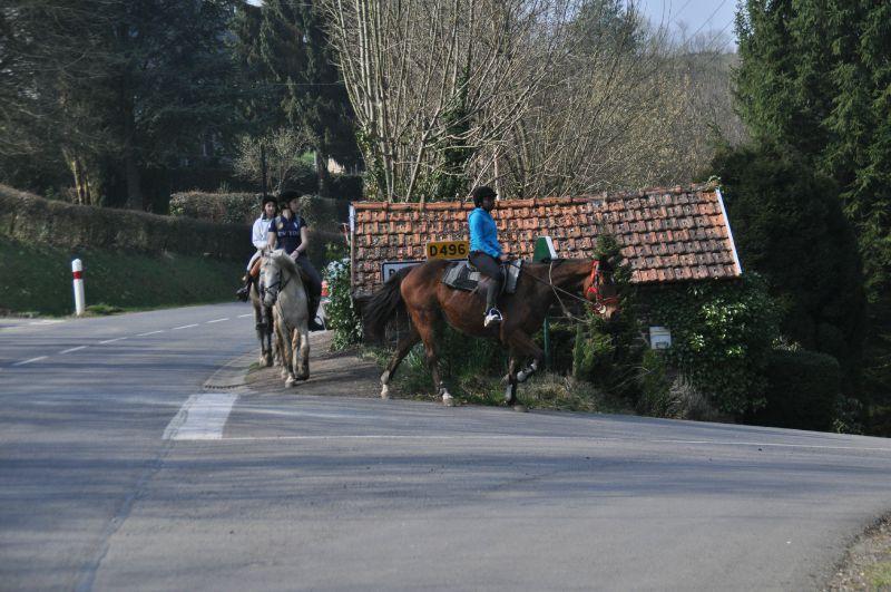 La Balade du Jambon - Balade à cheval dans le mortainais (32)