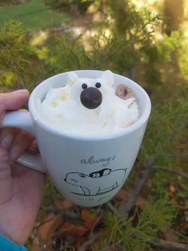 Chocolat viennois Ours polaire 03