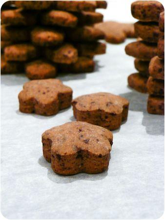 Flocons au chocolat-4