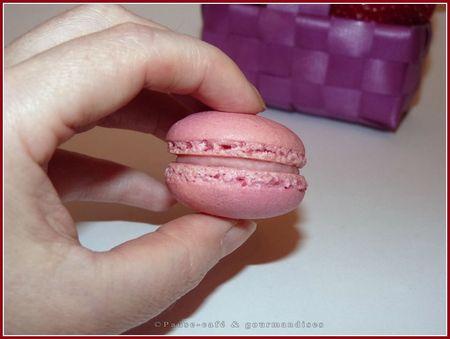 macarons___la_fraise__57_