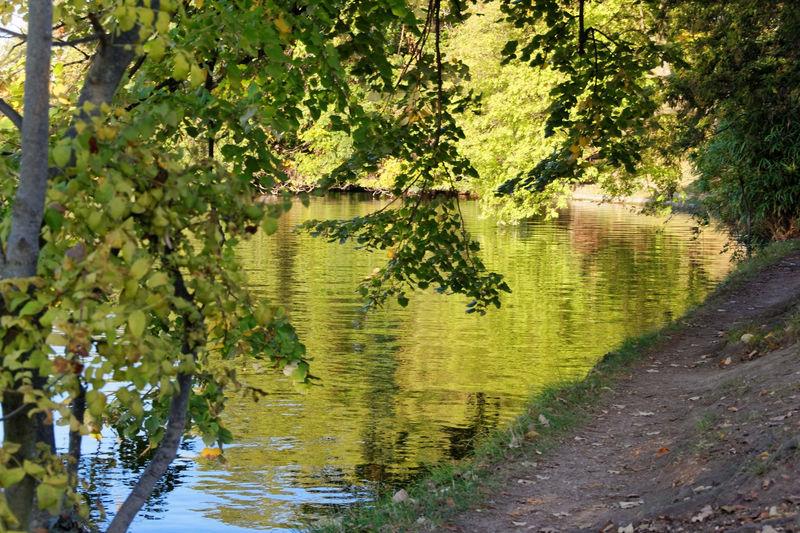 Bois_de_Boulogne_automne__13_