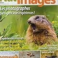 Article naissance de cigale dans nat'image 21 (août-septembre)