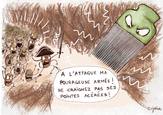 illu_paulette