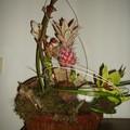 061223 Art floral