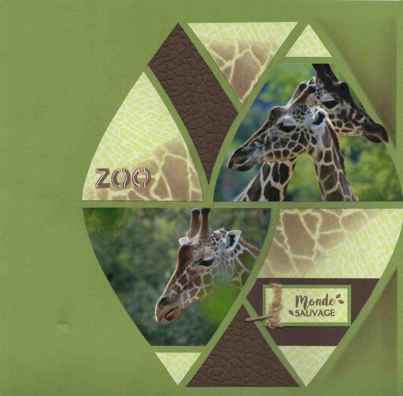 girafes 4