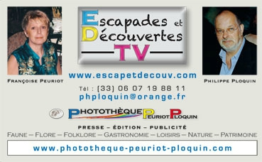 CARTE_de_VISITE_Escapades_et_DecouvertesTV_marges