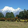 Balcons de l'Annapurna