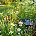 Windows-Live-Writer/Jardin_10232/DSCN0762_thumb