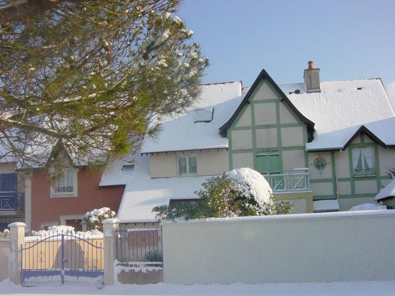 neige du 11 février 2010 11