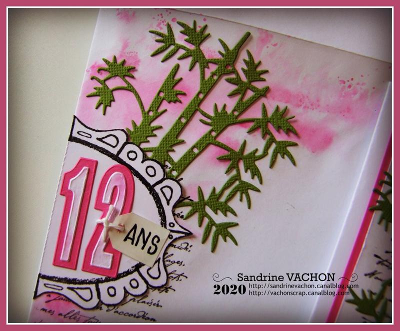 Carte défi 629 Sandrine VACHON PCC (4)