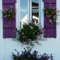 Fenêtre à Port Lay