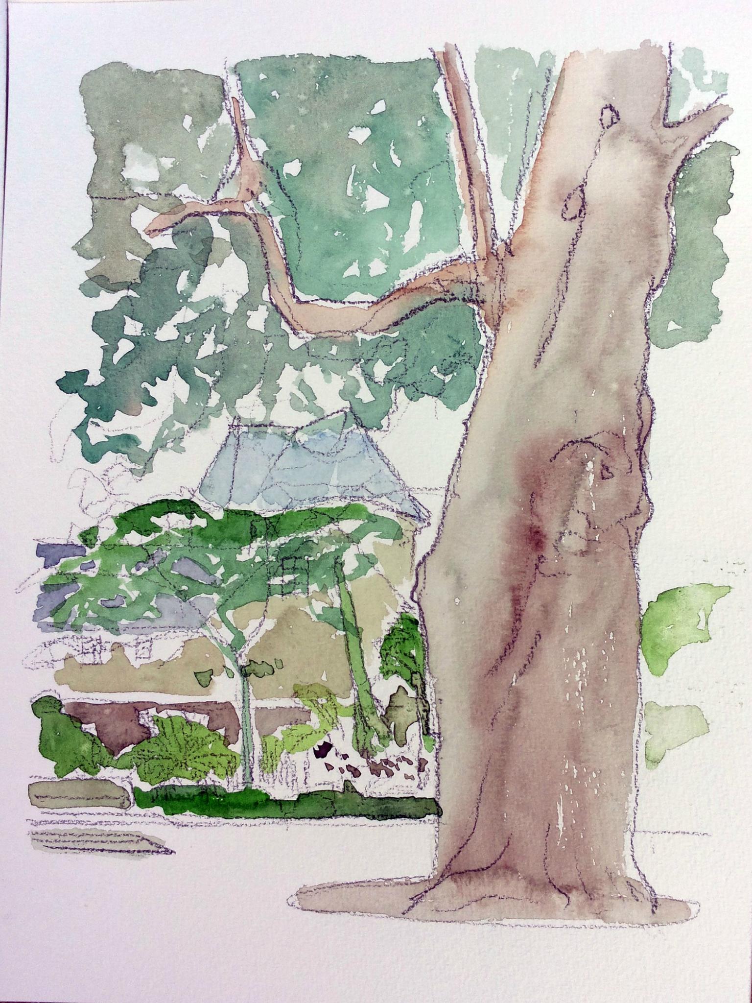 Près de l'arbre