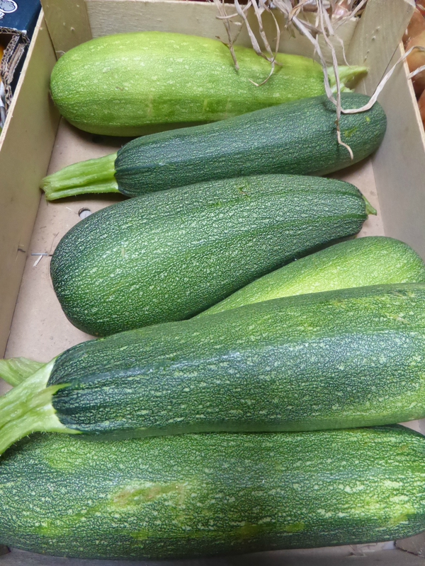 9-courgettes