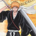 Section manga : un grand classique, bleach