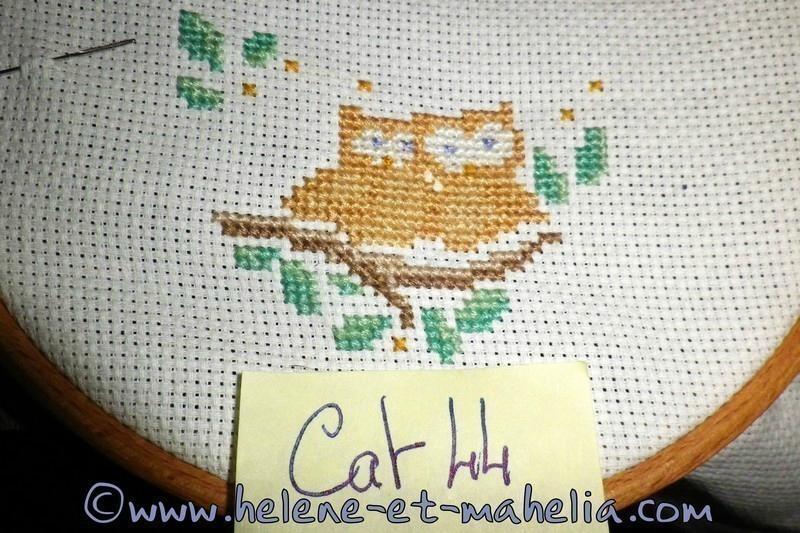 cat44_salaout15_8