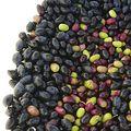olivesCarre400