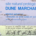 DUNE MARCHAND