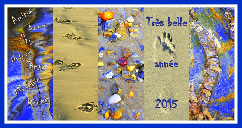 voeux 2015 AA