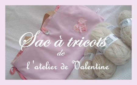 2010_02_04_sac_tricots_rose3
