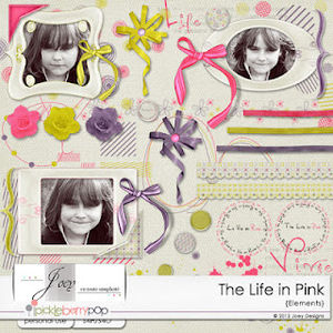 pb0512_Joey_thelifeinpink_elements_preview