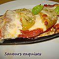 Aubergines aux tomates et mozzarella gratinées