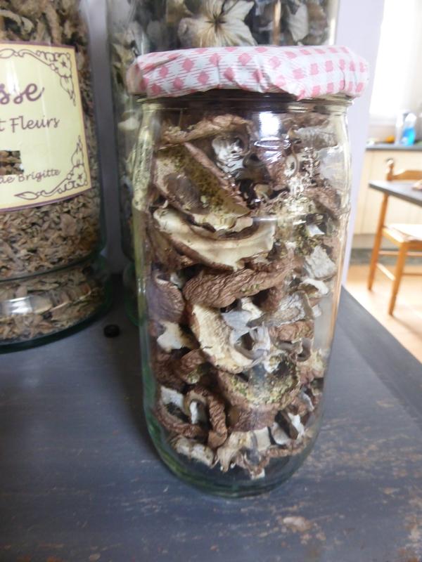 10-champignons séchés (9)