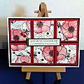 Painted poppies - atelier à domicile