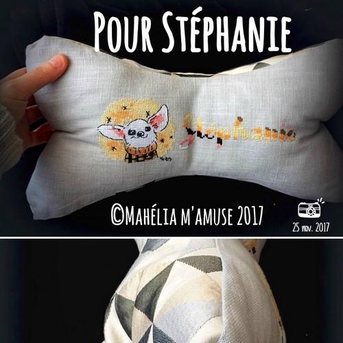 chihuahua pour Stéphanie_20171125