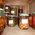 poivrons-cerises-rhubarbe-tomates
