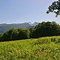 Un jour en forêts d'Aspe Barétous, le 25 juin 2012.