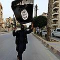 Michel goya : « daech se prépare déjà à sa déterritorialisation »