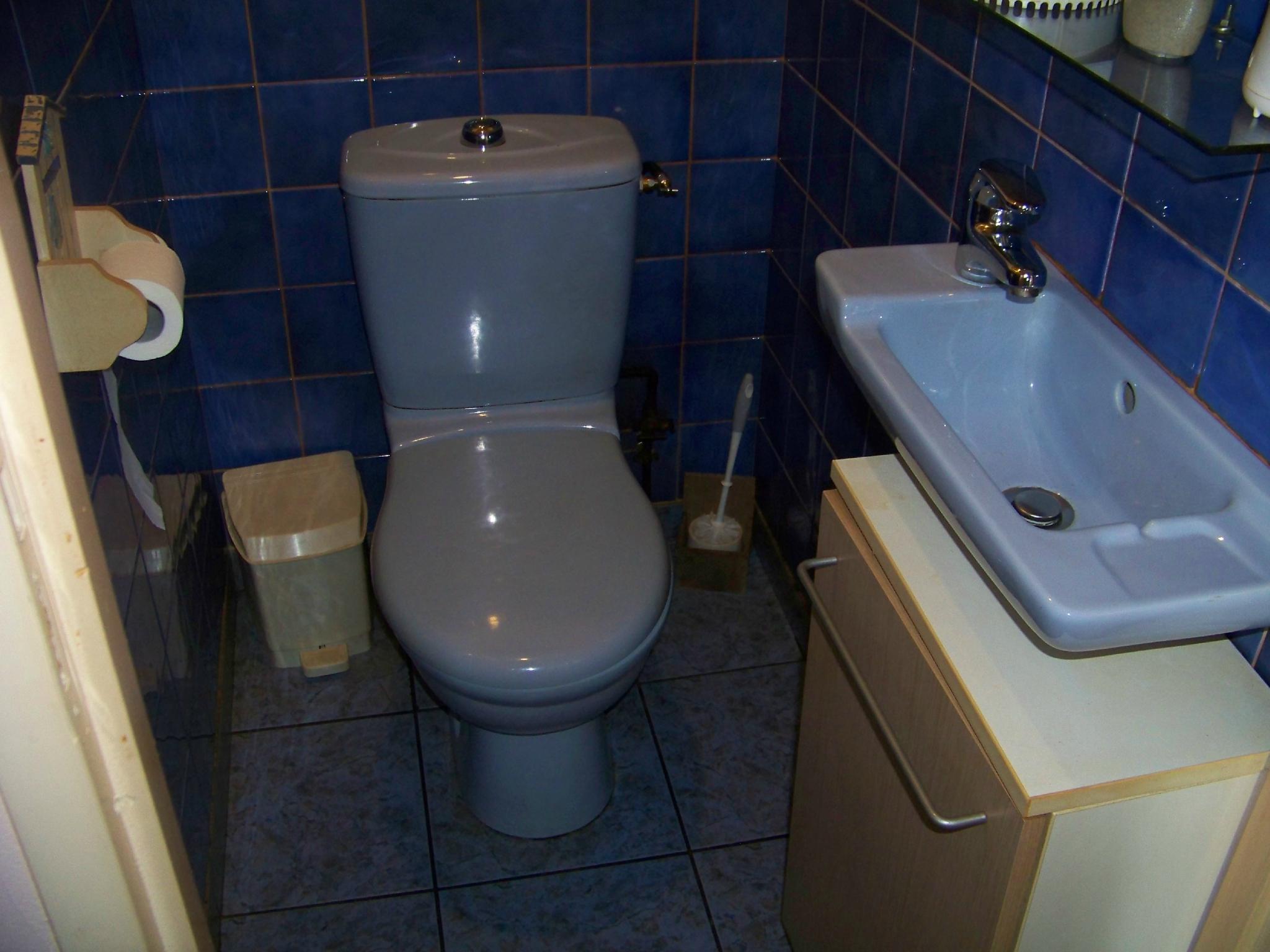 les wc visiteurs avec lave mains et petit placard sur mesure lamaisonlucinges. Black Bedroom Furniture Sets. Home Design Ideas