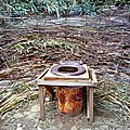 tribu vivace yurtao 07