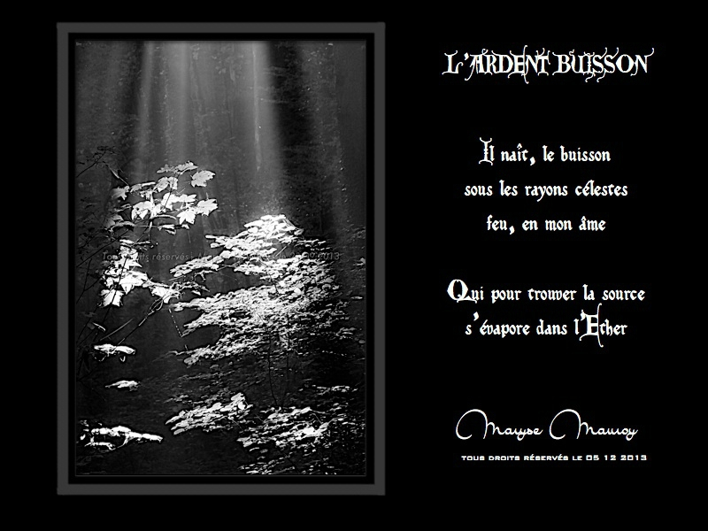 l'ardent buisson