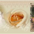 Bannière Blog de CathyRose