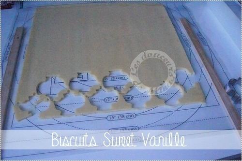Biscuits_Sweet_Vanille0001