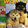 magazine-wakou-numero-249-ZA37802155059540249001