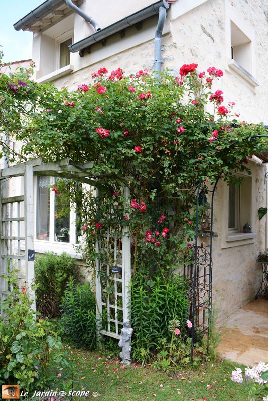 PAT_7552-Petit-jardin-de-St-Fiacre