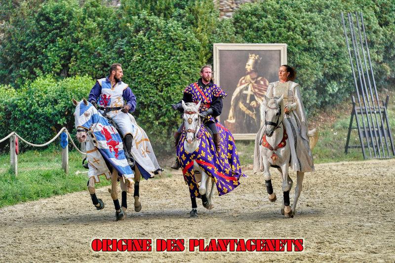 ORIGINE DES PLANTAGENETS