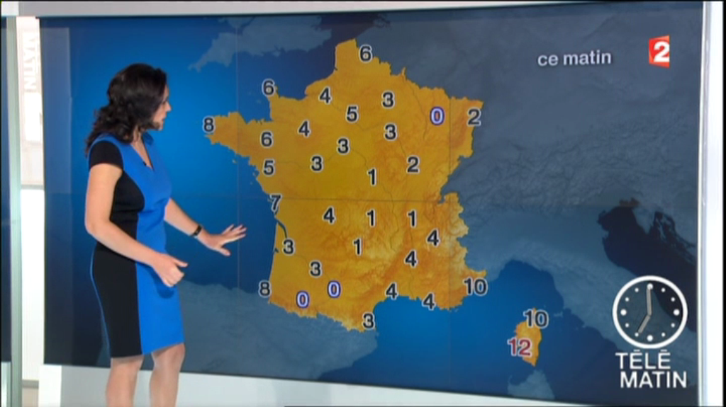 patriciacharbonnier06.2014_02_17_meteotelematinFRANCE2