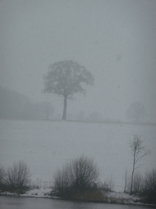 neige 13