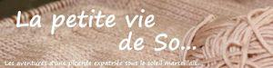 Bannière rose3
